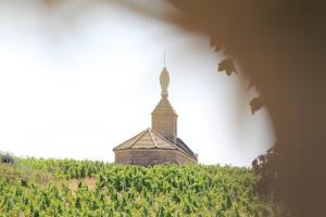 Les Sommeliers Rhône Alpes en journée d